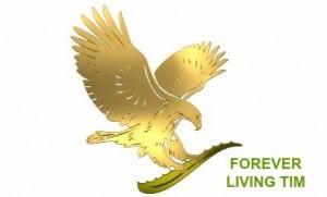 flp-eagle-logo-soli